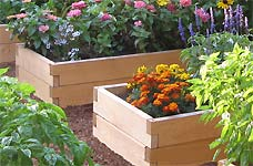 how to build raised garden