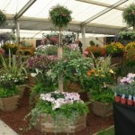 The Malvern Autumn Show