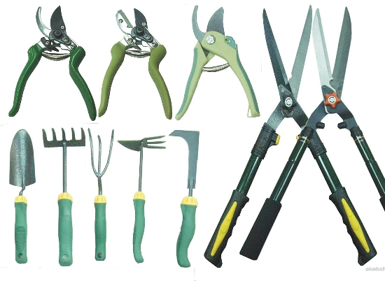 Tips to buy garden gadgets for the elderly gardening for Gardening tools for seniors