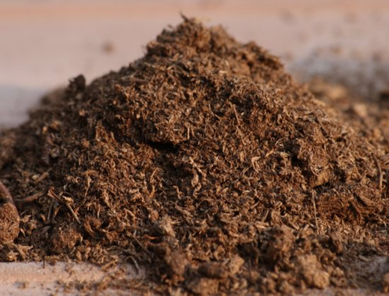 alternative of peat moss