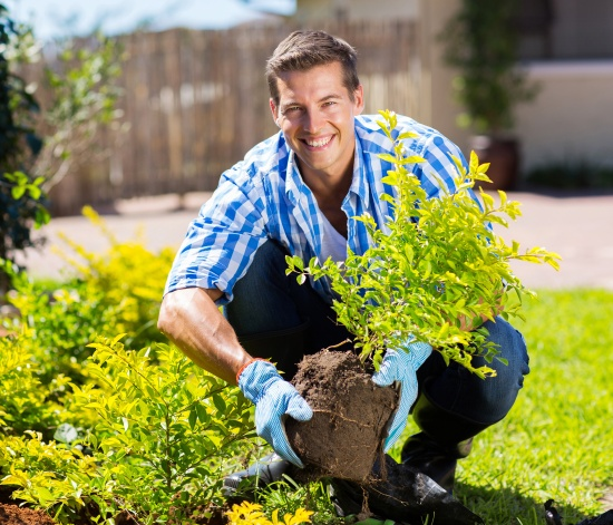 amazing tips to caress your garden during monsoon