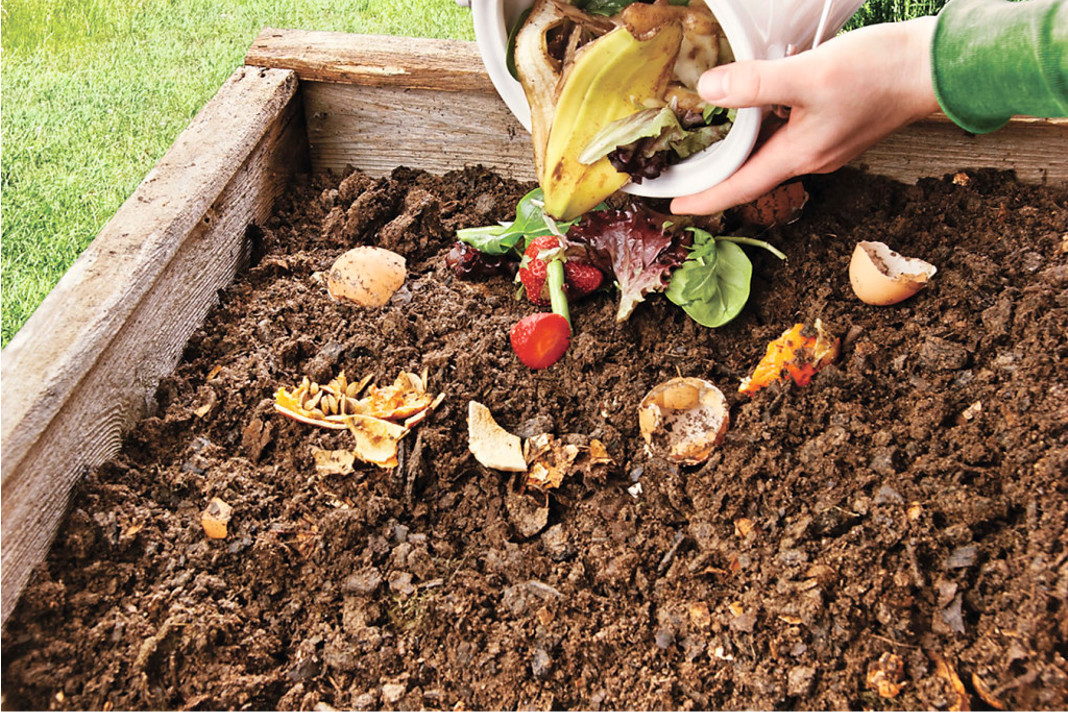 Five things you must never put in your compost pile