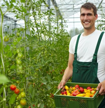 6 tips from organic farmers that you help a great deal