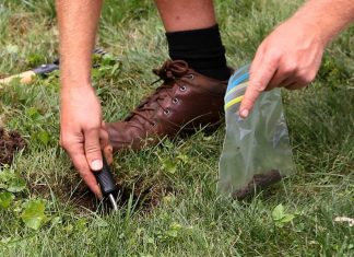 7 Easy Soil Tests you can Carry Out