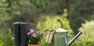 8 gardening equipment you should know