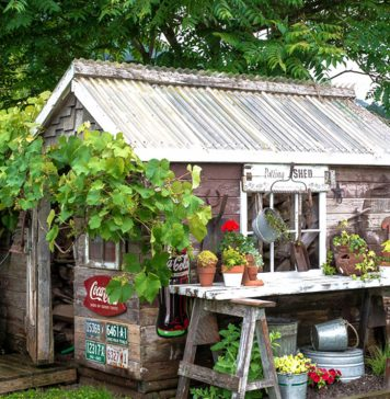 5 tips to keep in mind when buying shed for your garden