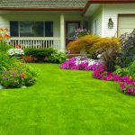 How to Change Your Garden with Changing Seasons?