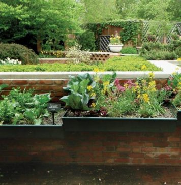 Tips to Help You Choose the Right Plants for Your Garden