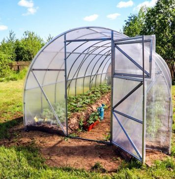 4 Ways You Can Make Your Own Greenhouse