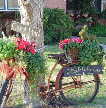 How To Decorate A Garden With Waste Material