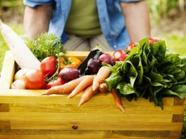 11-Planting-Tips-For-Growing-Vegetables