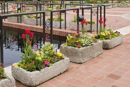Grow plants in troughs