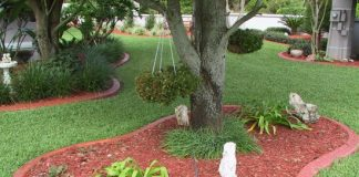 tips for edging your lawns