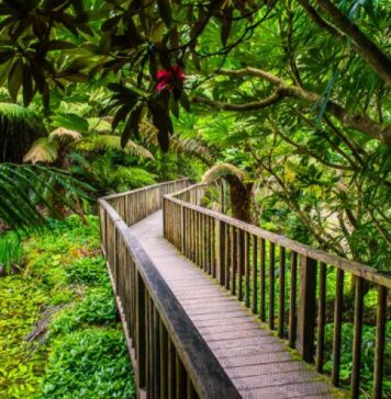 7 Bewitching Secret Gardens in the World