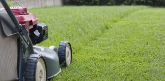5 Tips To Consider When Mowing Your Lawn